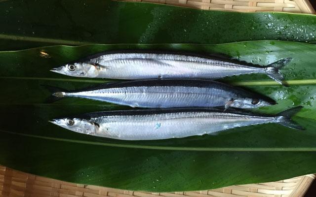 買ってきた秋刀魚を、ぬめりを取るイメージ