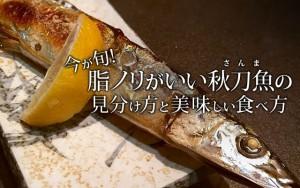 今が旬!脂ノリがいい秋刀魚(さんま)の見分け方と美味しい食べ方