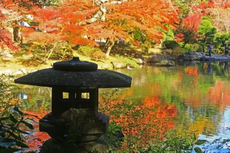 成田山公園 紅葉1