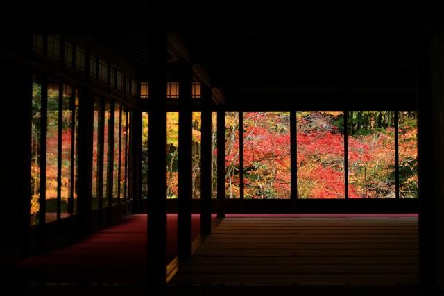 南禅寺の天授庵寺の紅葉