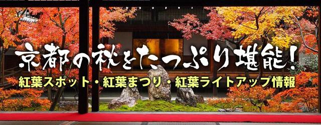 京都の秋をたっぷり堪能!紅葉スポット情報アイキャッチ