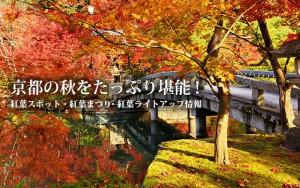 京都の秋をたっぷり堪能!〜紅葉スポット・紅葉まつり・紅葉ライトアップ情報〜