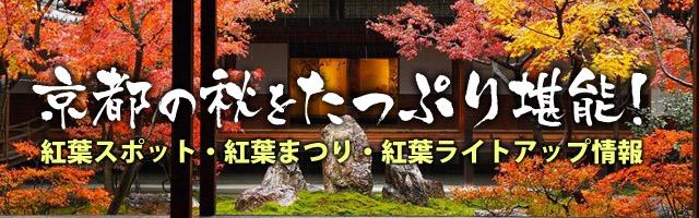 京都の秋をたっぷり堪能 紅葉スポット・紅葉まつり・紅葉ライトアップ情報 b