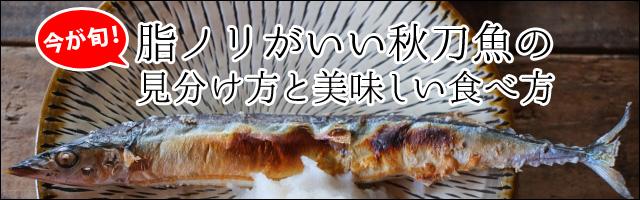 今が旬!脂ノリがいい秋刀魚(さんま)の見分け方と美味しい食べ方b