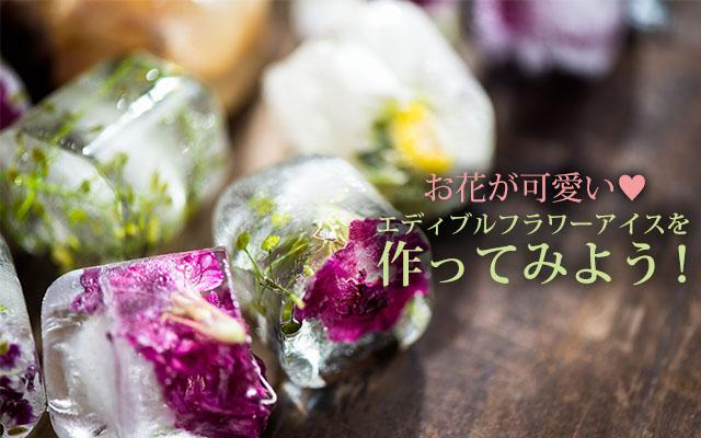お花が可愛い♡エディブルフラワーアイスを作ってみよう!b